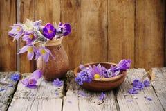 Flores da mola no fundo de madeira Imagem de Stock Royalty Free