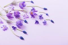 Flores da mola no fundo de papel imagem de stock
