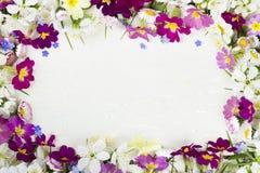Flores da mola no fundo do vintage Imagem de Stock