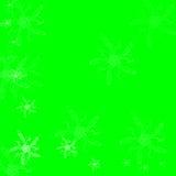 Flores da mola no fundo verde ilustração do vetor