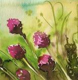 Flores da mola no prado fotografia de stock royalty free