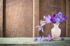 Flores da mola no vaso Foto de Stock Royalty Free