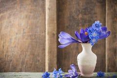 Flores da mola no vaso no fundo de madeira Fotos de Stock Royalty Free
