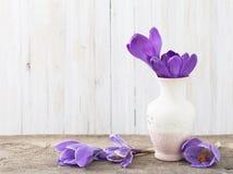 Flores da mola no vaso no fundo de madeira Fotos de Stock