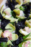 Flores da orquídea Foto de Stock Royalty Free