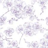 Flores da orquídea no fundo branco Contorno claro do puple Teste padrão floral sem emenda Pintura da aguarela Ilustração desenhad ilustração do vetor