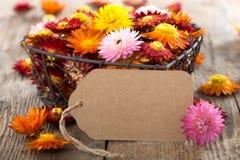 Flores da palha com etiqueta do presente Fotos de Stock