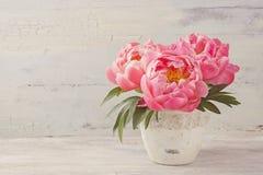 Flores da peônia Fotos de Stock
