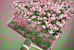 Flores da pintura Foto de Stock Royalty Free