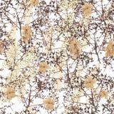 Flores da planta de escalada da hortênsia Foto de Stock