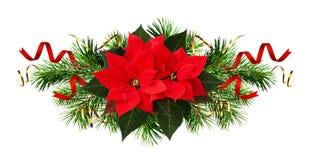 Flores da poinsétia e decorações vermelhas do Natal Imagem de Stock Royalty Free