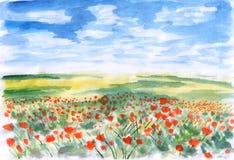 Flores da pradaria Ilustração Stock