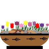 Flores da primavera Imagens de Stock Royalty Free