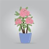 Flores da probabilidade de intercepção Sião Ilustração do Vetor