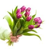 Flores da terra arrendada da mão Imagens de Stock Royalty Free