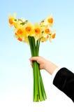 Flores da terra arrendada da mão Fotos de Stock