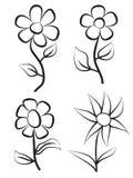 Flores da tração da mão Imagem de Stock