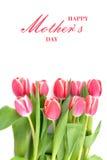 Flores da tulipa para o dia de mães Foto de Stock