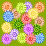 Flores das cores Fotografia de Stock Royalty Free