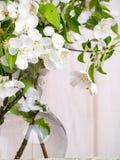 Flores de Apple en florero Imágenes de archivo libres de regalías