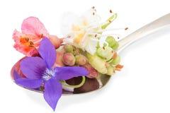 Flores de Bach en una cuchara Imagen de archivo