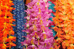 Flores de cadena Imágenes de archivo libres de regalías