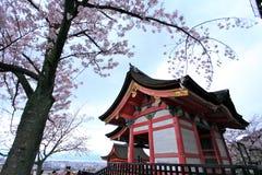 Flores de cerejeira, Kiyomizudera, Japão imagens de stock