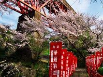 Flores de cerejeira na cidade de Nebukawa Imagens de Stock