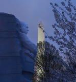 Flores de cereza y monumento de MLK Imagenes de archivo