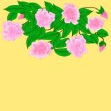 Flores de cerezo de la fantasía Foto de archivo