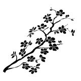 Flores de cerezo de la ramita ilustración del vector