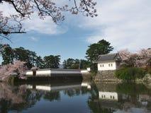Flores de cerezo en el parque del castillo Foto de archivo libre de regalías