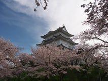Flores de cerezo en el parque del castillo Fotos de archivo libres de regalías