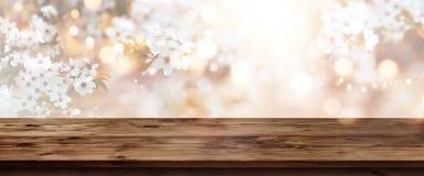 Flores de cerezo en primavera con la tabla de madera Fotografía de archivo