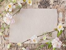 Flores de cerezo y nota en blanco imágenes de archivo libres de regalías