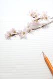 Flores de cerezo y utensilios de la escritura Imagenes de archivo