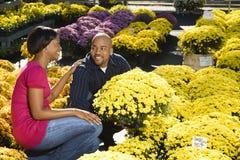 Flores de compra dos pares. Imagens de Stock