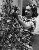 Flores de corte de la mujer de la vid (todas las personas representadas no son vivas más largo y ningún estado existe Garantías d Imagen de archivo libre de regalías