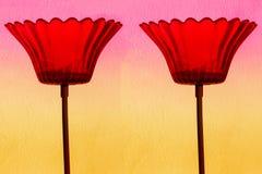 Flores de cristal Fotografía de archivo