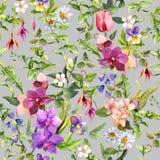 Flores de Ditsy e hierbas salvajes Modelo floral del vintage y herbario inconsútil watercolor Foto de archivo libre de regalías