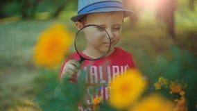 Flores de exploración del muchacho con una lupa almacen de video