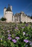 Flores de Francia Loire Valley del castillo de Chenonceau imagenes de archivo