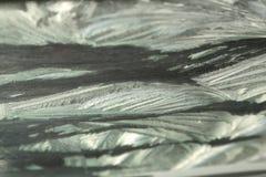 Flores de Frost Fotos de archivo