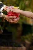 Flores de Gifting del niño Fotografía de archivo libre de regalías