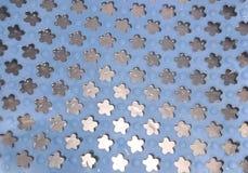 Flores de goma foto de archivo libre de regalías