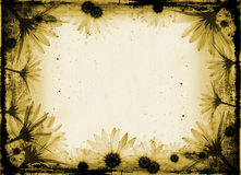 Flores de Grunge Imagem de Stock Royalty Free