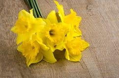 Flores de Jonquil fotos de stock royalty free