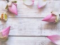 Flores de lótus cor-de-rosa na tabela de madeira foto de stock royalty free