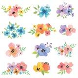 Flores de la acuarela Fotos de archivo libres de regalías