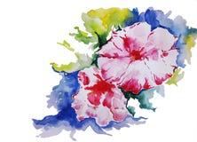 Flores de la acuarela Imagenes de archivo